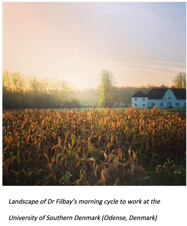 Photo of landscape shot of Dr Filbay's morning cycle to work at the University of Southern Denmark