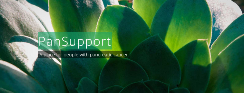 "Banner featuring green leaves, with text saying ""PanSupport, a place for people with pancreatic cancer""."