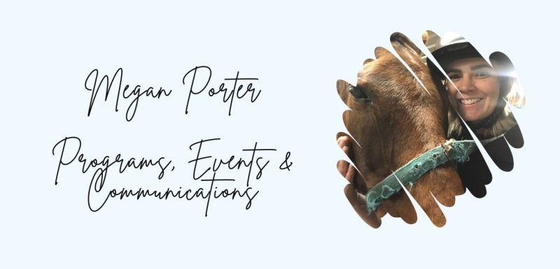 Megan Porter title picture