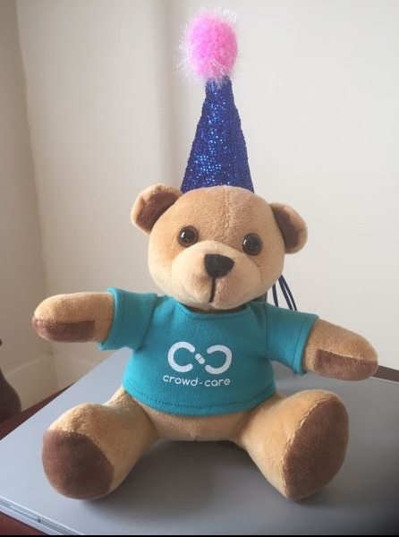 Plush bear mascot for online platform CrowdCARE, brown bear wearing blue company shirt and a party hat